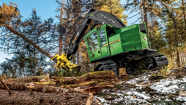 A feller buncher works on-site to bring down a tree